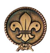 World Scout Copper Pin Badge