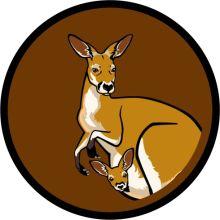 Aufnäher Sippenabzeichen Känguru 31-50