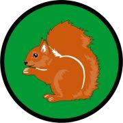Aufnäher Sippenabzeichen Eichhörnchen 1-10