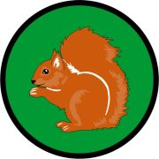 Aufnäher Sippenabzeichen Eichhörnchen 11-20