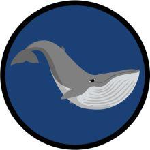 Aufnäher Sippenabzeichen Wal 31-50